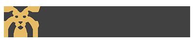 wideBraveSahara-logo-white